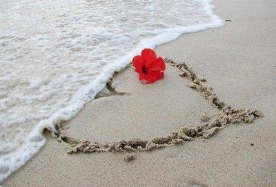 coração-flor